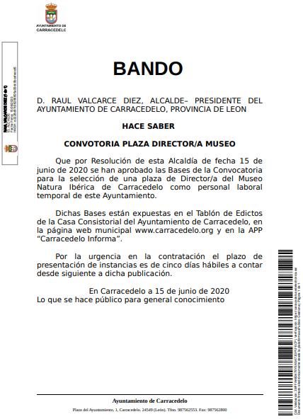 Bando Bases Convocatoria Plaza Director/a Museo